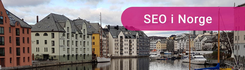 SEO Norge header